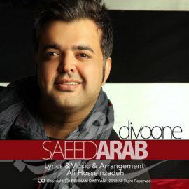 دانلود آهنگ دیوونه از سعید عرب