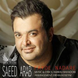 دانلود آهنگ فایده نداره از سعید عرب
