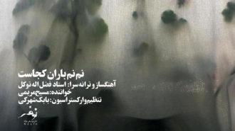 «نم نم باران کجاست»؛ اثری از فضلالله توکل منتشر شد