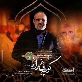 دانلود آهنگ کوچه باغ راز از محمد اصفهانی