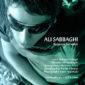 دانلود آهنگ بانوی بهشتی از علی صباغی