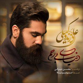 دانلود آهنگ دنیای بی رحم از علی زندوکیلی