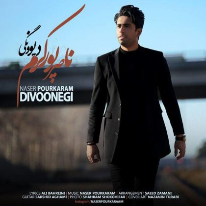 دانلود آهنگ دیوونگی از ناصر پورکرم
