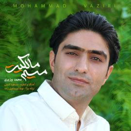 دانلود آهنگ میم مالکیت از محمد وزیری