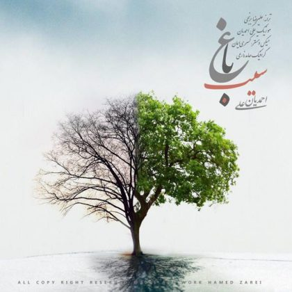دانلود آهنگ باغ سیب از علی احمدیان