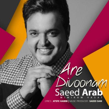 دانلود آهنگ آره دیوونم از سعید عرب