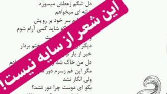 اشتباه عجیب در انتشار آلبوم علیرضا قربانی و همایون شجریان/ این شعر از سایه نیست!