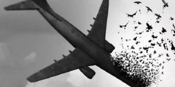 گرامیداشت یاد هموطنان پرواز هواپیمای اوکراین در جشنواره موسیقی فجر