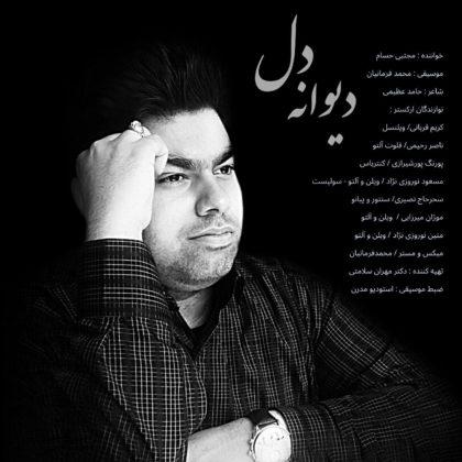 دانلود آهنگ دیوانه دل از مجتبی حسام