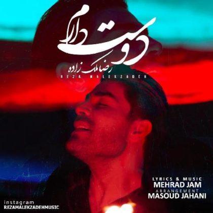 دانلود آهنگ دوست دارم از رضا ملک زاده